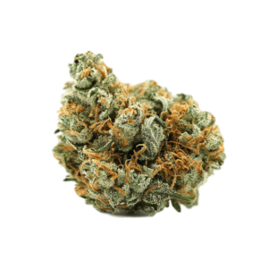 Buy Lemon Haze Strain