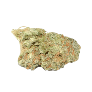 Buy Power Plant Strain